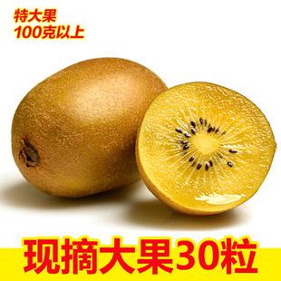四川蒲江黄心猕猴桃新鲜水果奇异果大果弥猴桃当季约5斤30个包邮